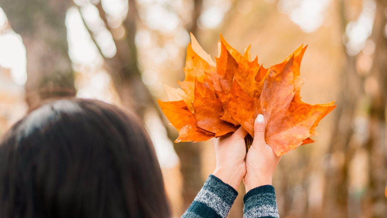 10 Fall Photo Ideas